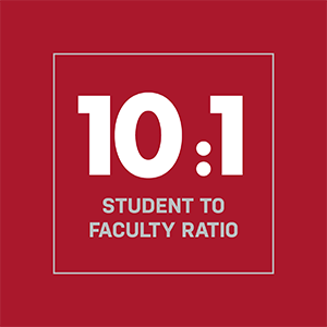 Ten to one student to faculty ratio